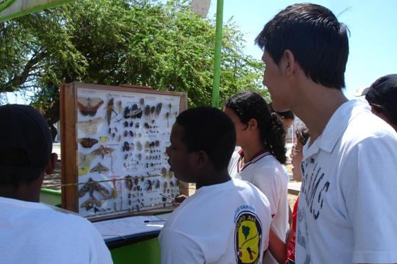 Alunos do Laboratório de Entomologia (DBI/UFS) divulgam informações sobre a diversidade de insetos de Sergipe