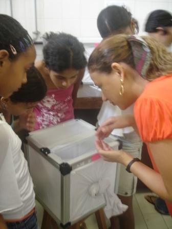 Profa. Roseli LaCorte mostra o mosquito da dengue (DMO/UFS)