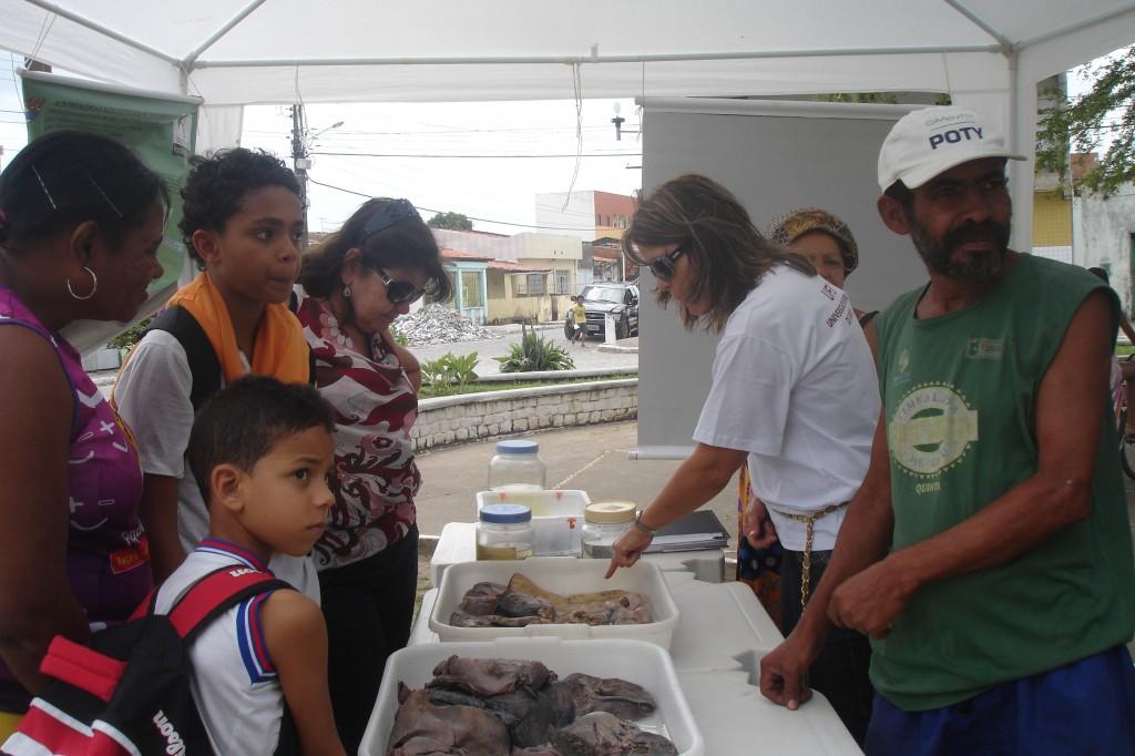 Professora Luciene Barbosa (DMO/UFS) apresentando material para membros da comunidade